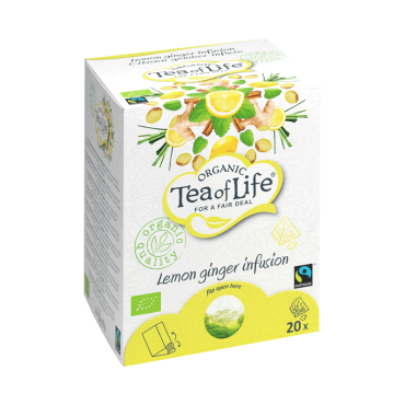 Fairtrade Pyramids Lemon Ginger